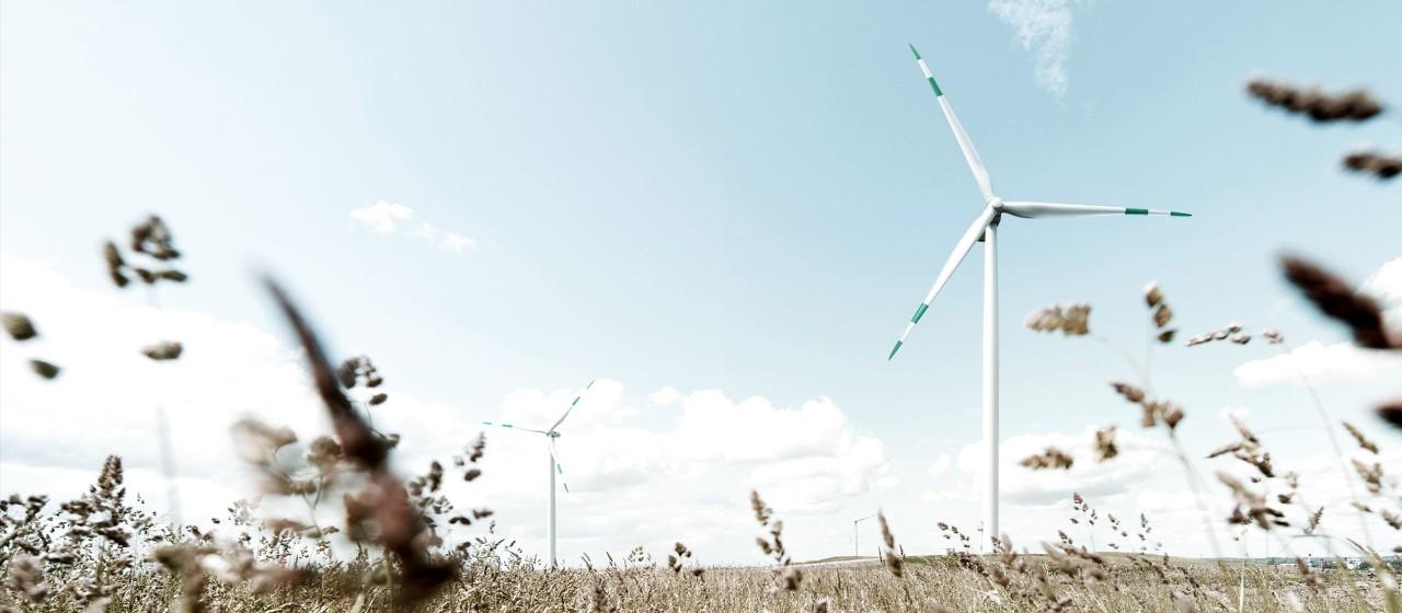 Nachhaltig leben und nachhaltig anlegen