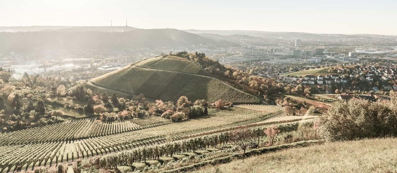 Privates Vermögensmanagement In Der Region Stuttgart